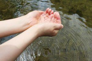 お浄土の水
