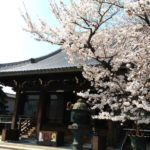 三重県桑名市の桑名別院へ行ってきました